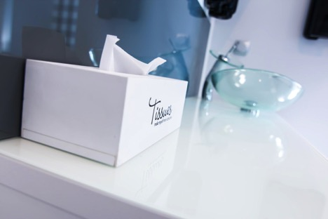 Clean T.O Preparing Your Condo for Fall Tissue Picture