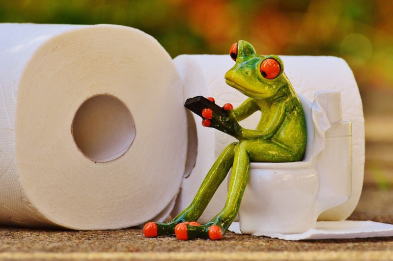 Clean T.O 5 Tips Public Restrooms Picture of Frog Toilet Paper