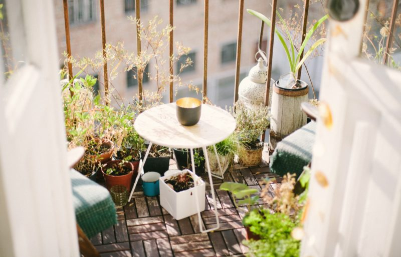 Clean T.O a guide to indoor plants in small spaces picture of balcony