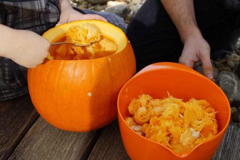 Clean T.O: 5 Tricks to Avoid Pumpkin Catastrophe Tools
