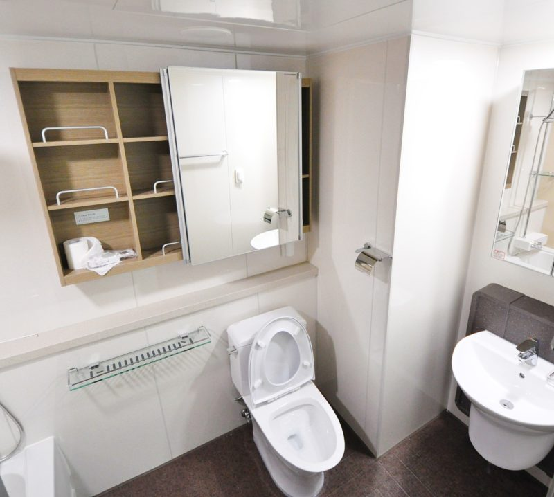 Clean T.O Why Your Condo Should NEVER be Unoccupied Picture Of Toilet