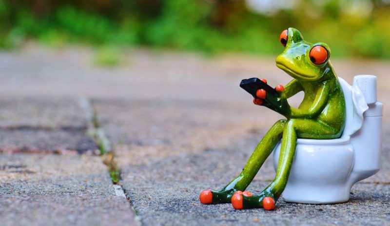 clean t.o 10 weird facts about cleaning - Frog On Toilet