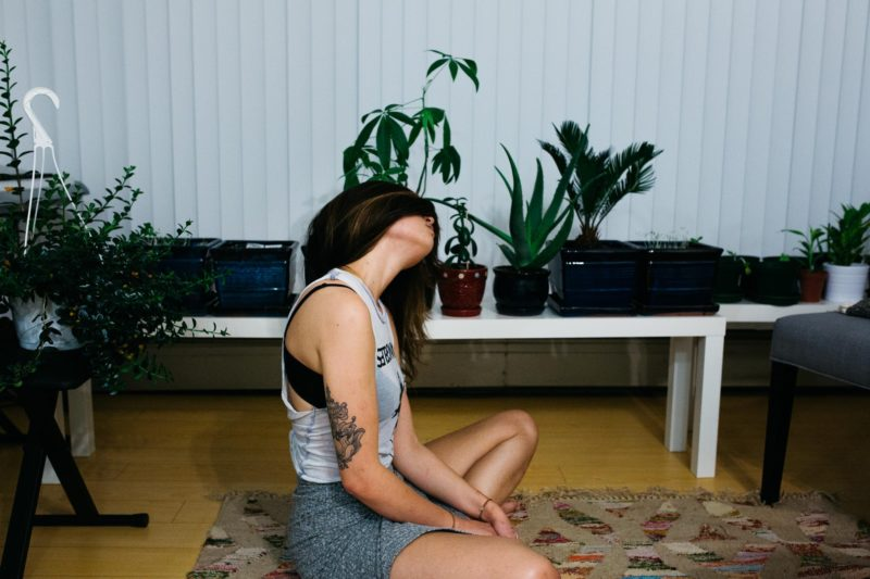 The Air In Your Home Might Be Polluted Plants