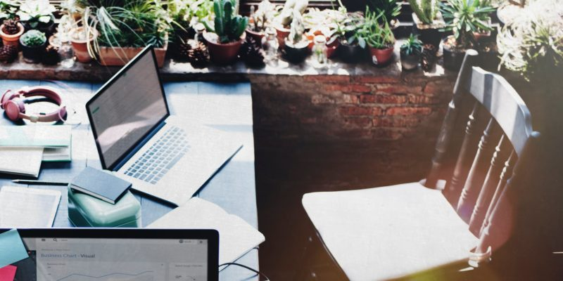 4 TLC Tips for Any Winter House Plant Desk