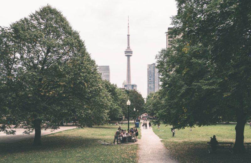 Does Toronto Have a Litter Problem? Park